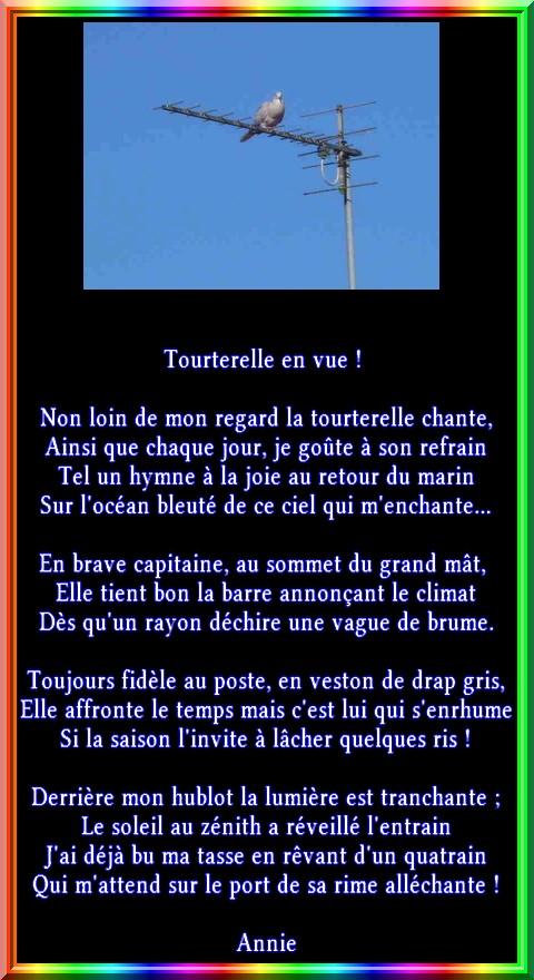 tourte10